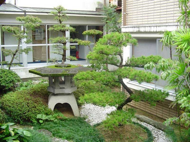 mini japanese garden design ideas photo - 6