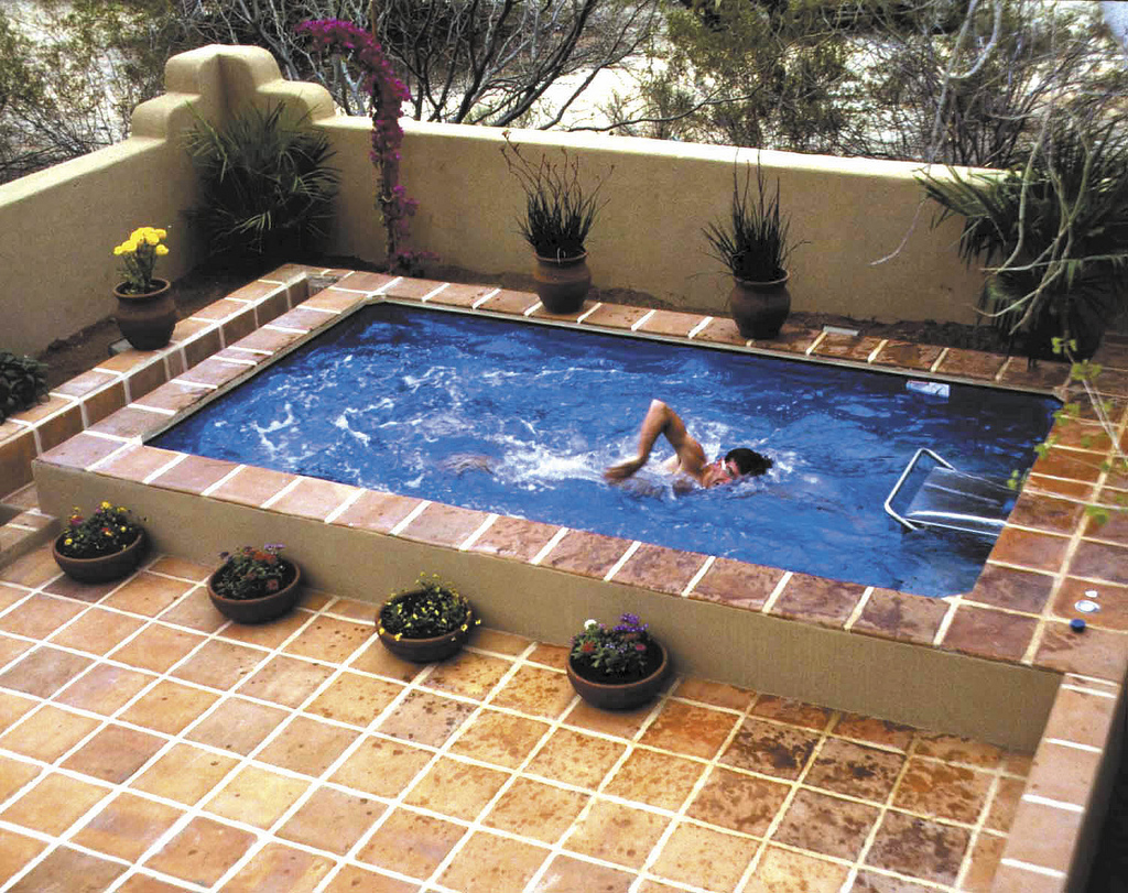 mini swimming pool designs photo - 6