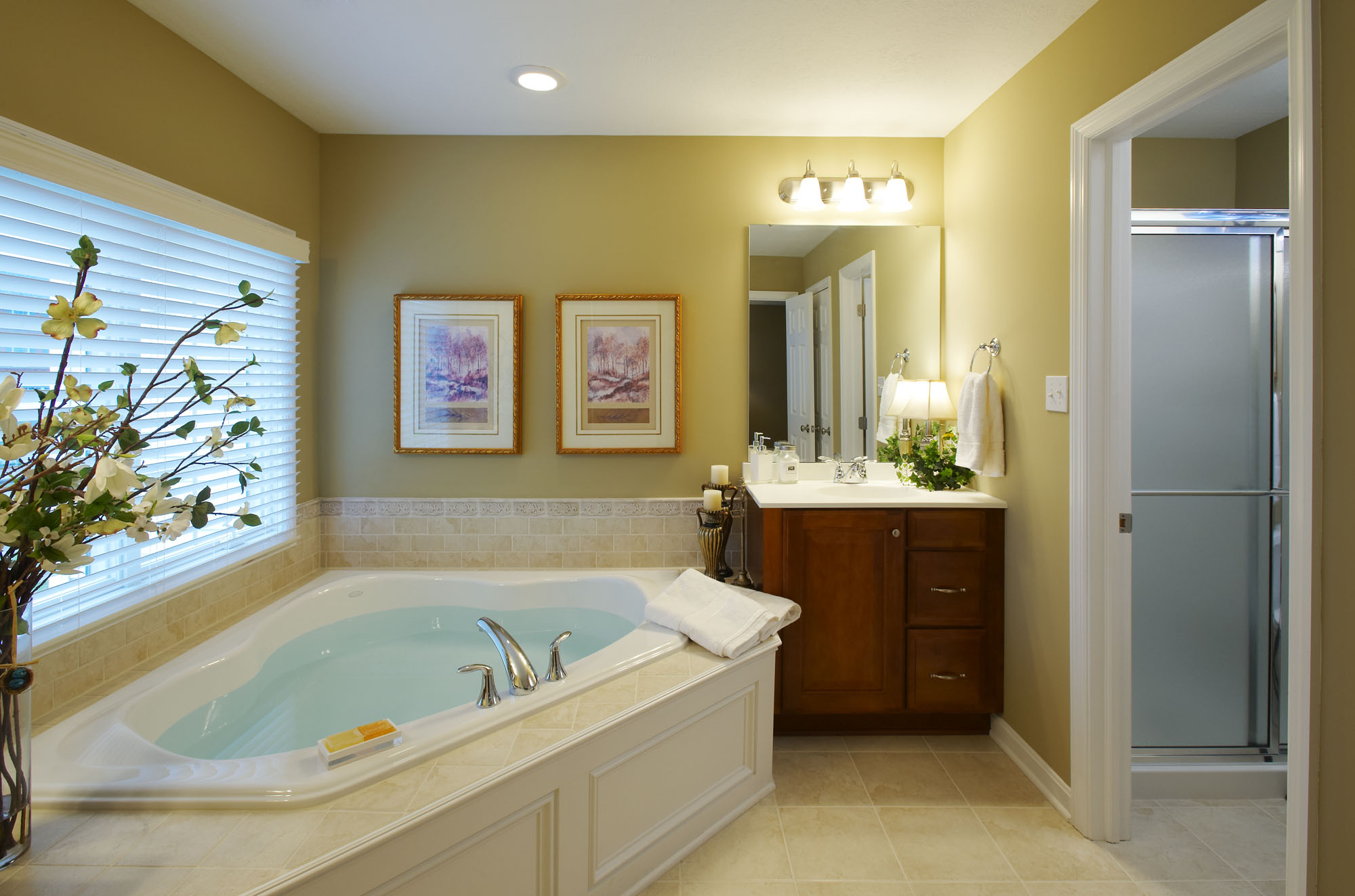Model home bathroom pictures 17 varities of looking your for Model bathroom designs
