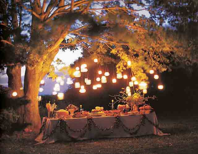 outdoor dinner party lights photo - 4