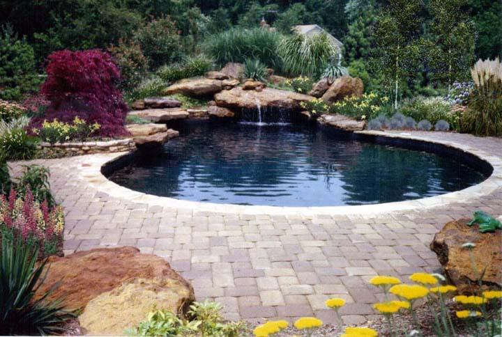 swimming pool designs with rocks photo - 5