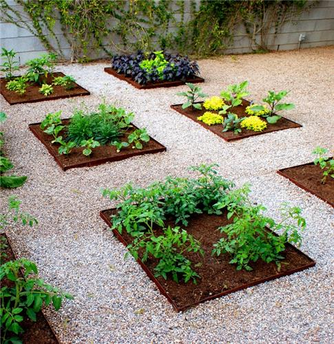 urban vegetable garden design photo - 1