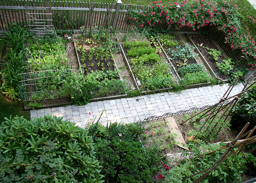 urban vegetable garden design photo - 3