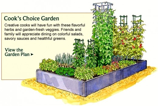 urban vegetable garden layout photo - 2