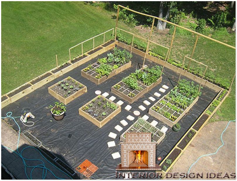 urban vegetable garden layout photo - 3