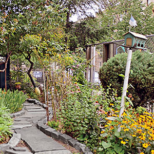 Urban Vegetable Garden Ideas front yard urban vegetable garden house townhouse garden with kale climbing grape vines Urban Vegetable Gardening Ideas
