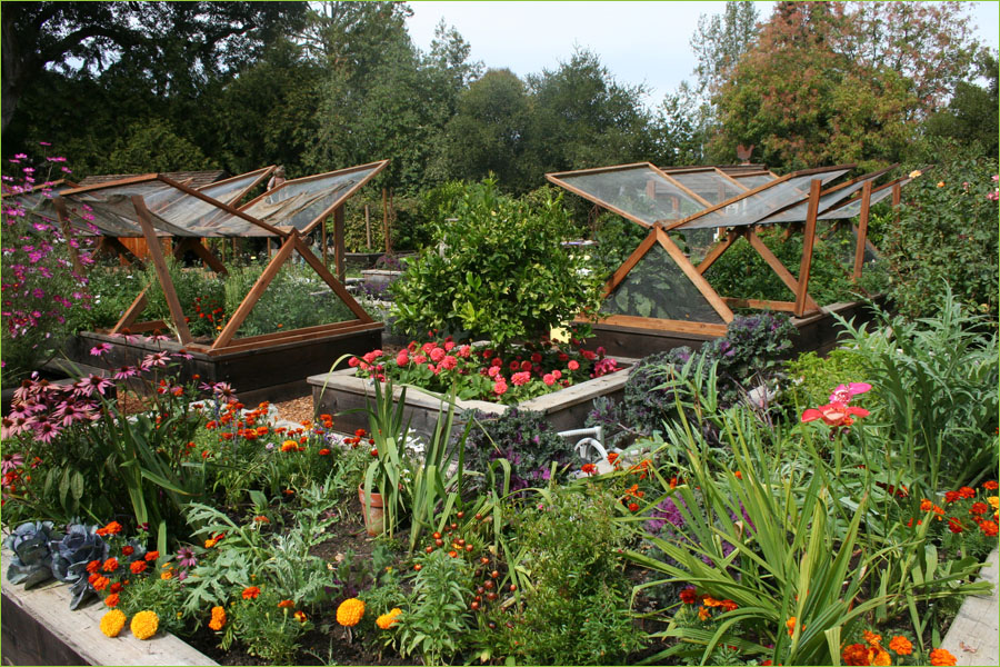 Vegetable Garden Designs designing a raised bed vegetable garden a fall makeover youtube in vegetable garden design source Veg Garden Design Ideas Photo 2