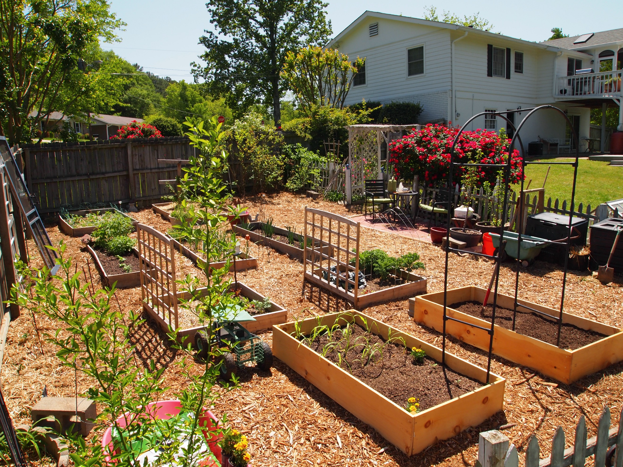 vegetable garden blueprints photo - 5