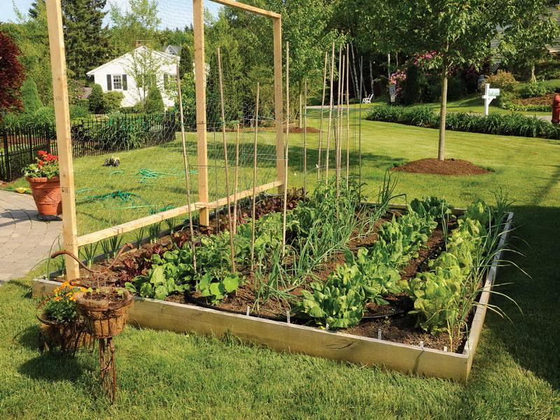 20 Vegetable Garden Box Ideas For 2017