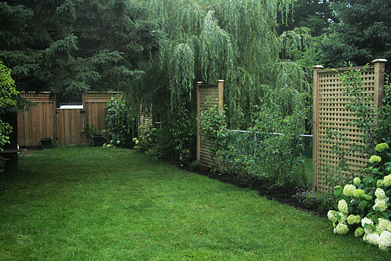 vegetable garden chain link fence photo - 3
