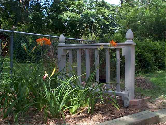 vegetable garden chain link fence photo - 5