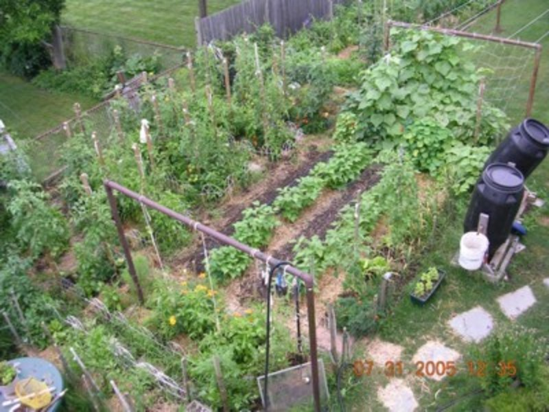 vegetable garden design ideas backyard photo - 2