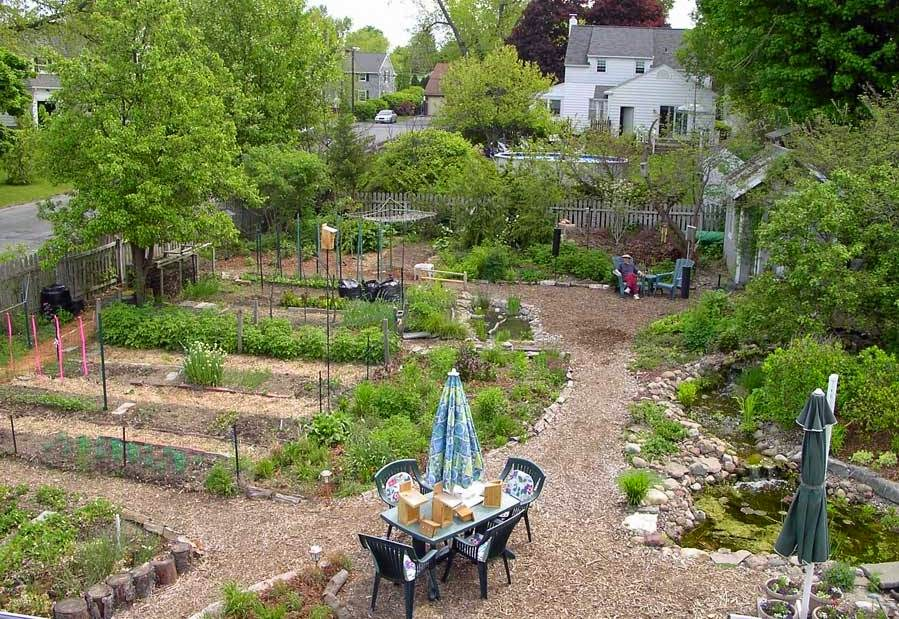 vegetable garden design ideas backyard photo - 4