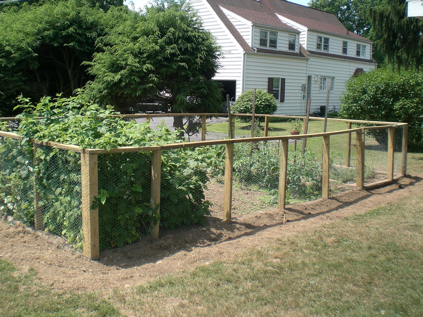 Vegetable garden deer fence ideas - Vegetable Garden Fence Interior Exterior Doors