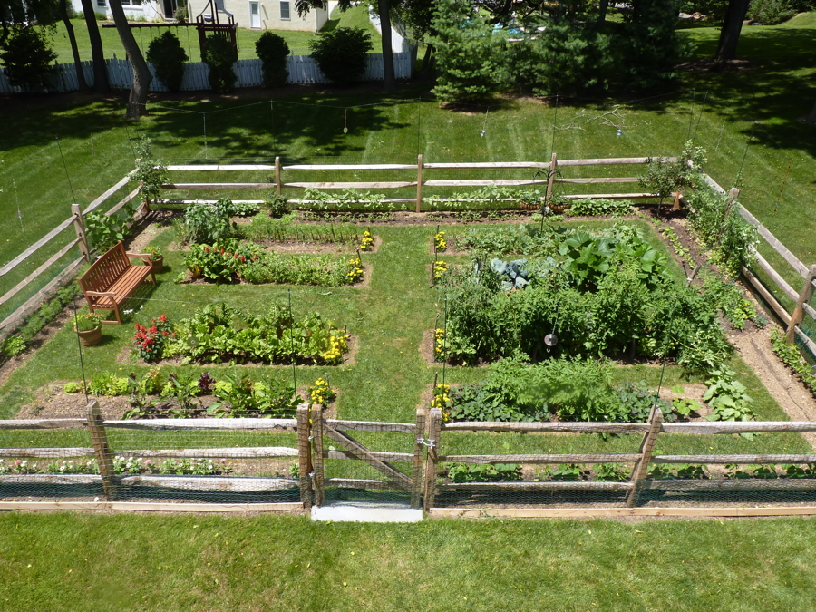 vegetable garden fence photo - 6