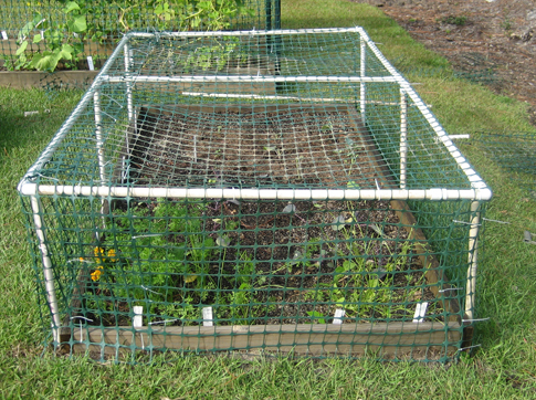 Chicken Wire Garden Fence Chicken Wire Garden Gate Gardening