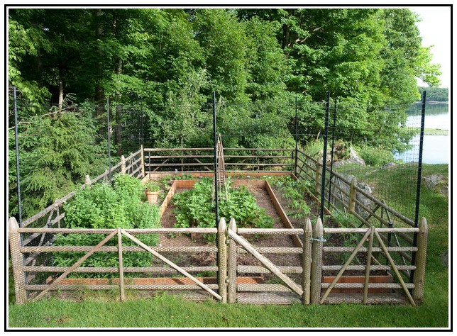 vegetable garden fence posts interior exterior doors