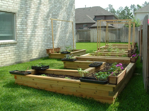 veggie garden design ideas photo - 1