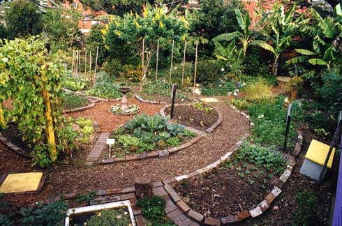 veggie garden design ideas photo - 4