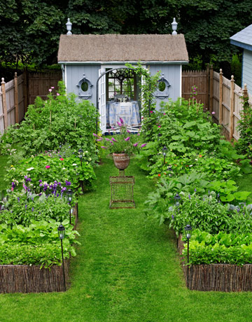 veggie garden design ideas photo - 5
