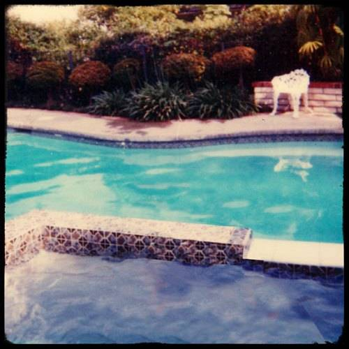 vintage swimming pool art photo - 2