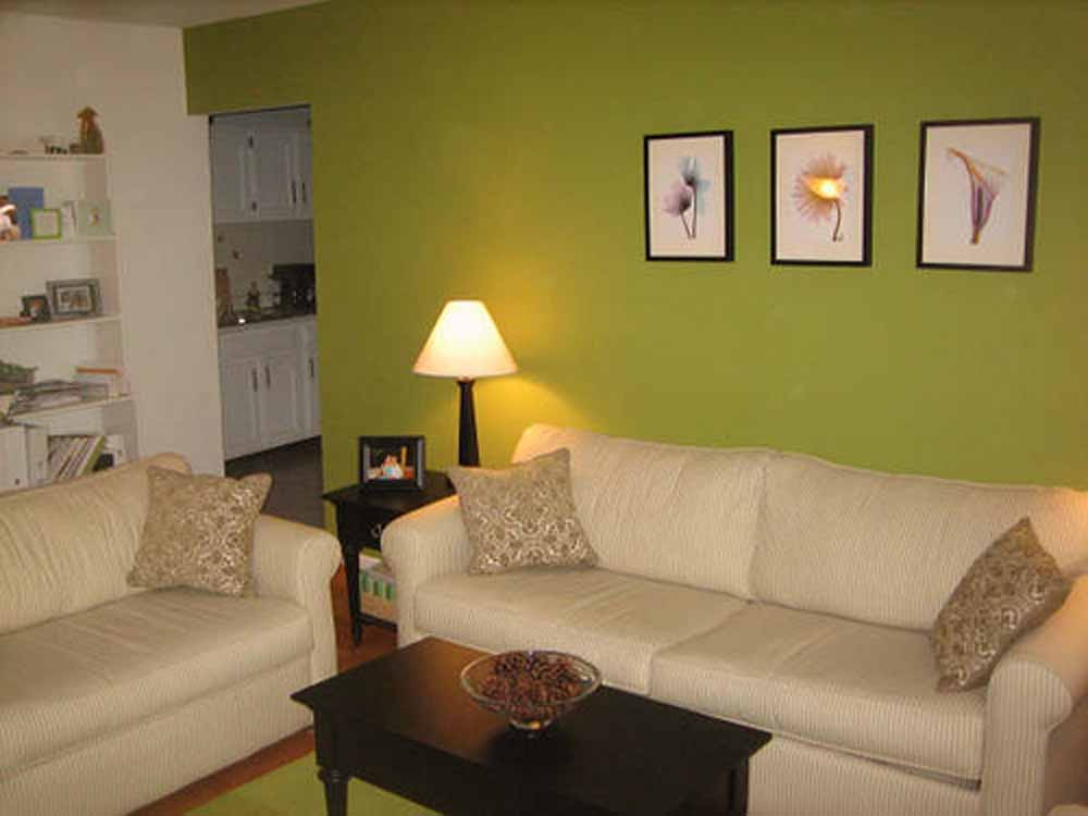Wall colour combination for small living room Interior