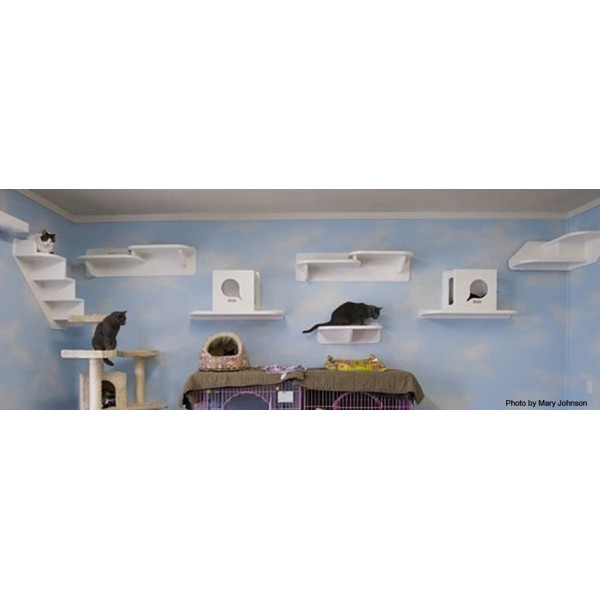 wall mounted shelves for cats photo - 3