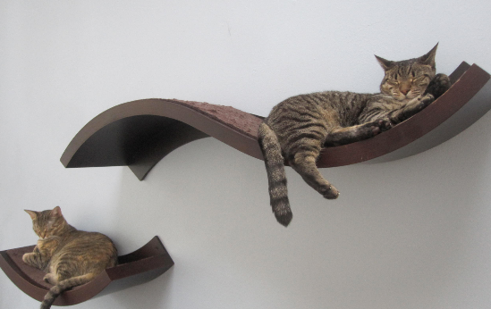 wall mounted shelves for cats photo - 5
