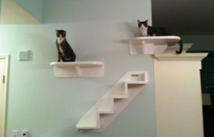 wall mounted shelves for cats photo - 6